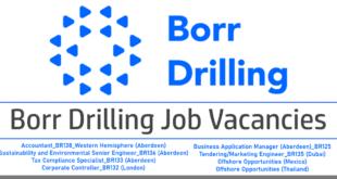 borr drilling jobs